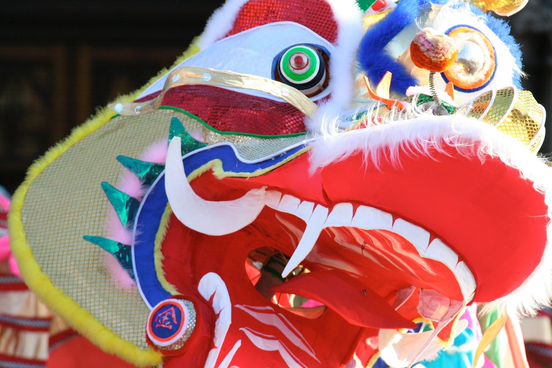 Chinese New Year, dragon